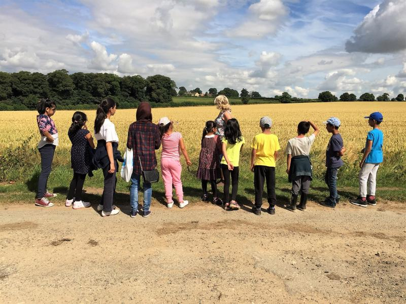 Farm visits for primary school holiday clubs