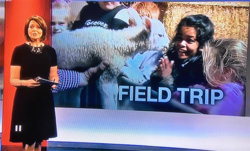 Farm visit profiled on BBC Look North