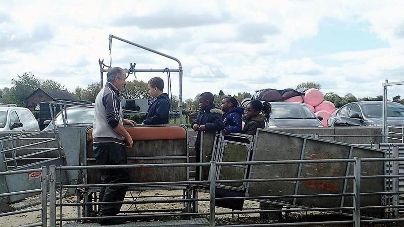 Sacred Heart RC Primary School brings farming to the heart of it's curriculum