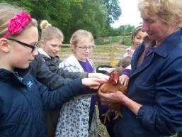 Shirley manors visit to organic farm swillington kay whitfield may 2015 permission (1)